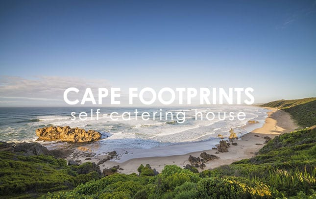 cape-footprints-portfolio-img