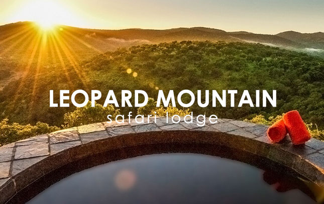 Leopard Mountain