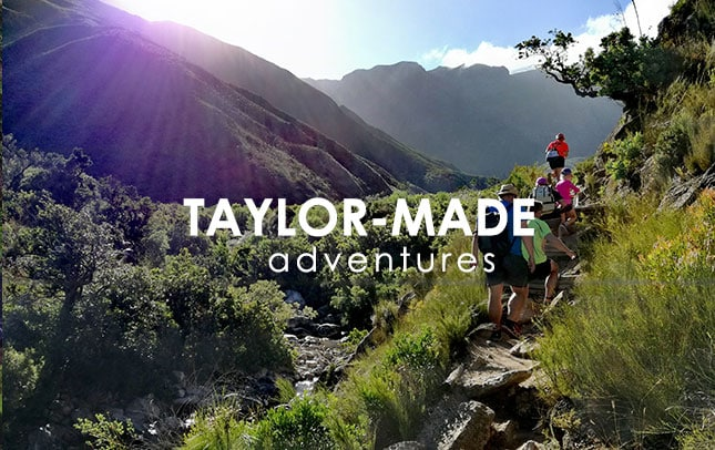 Taylor- Made Adventures