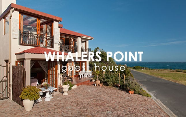 whalers-point-portfolio-img
